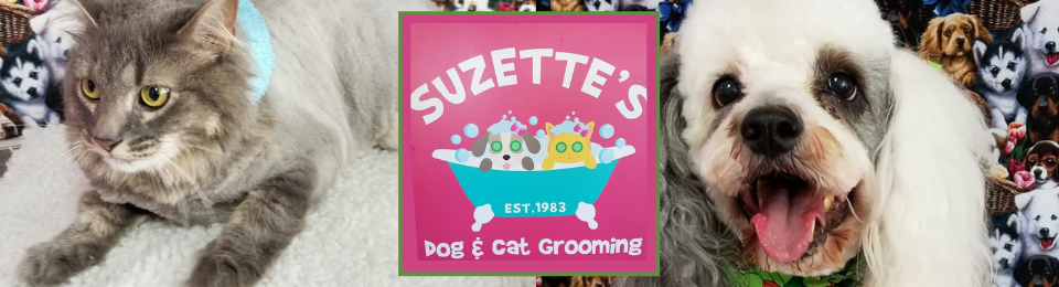 Suzette's Dog And Cat Grooming